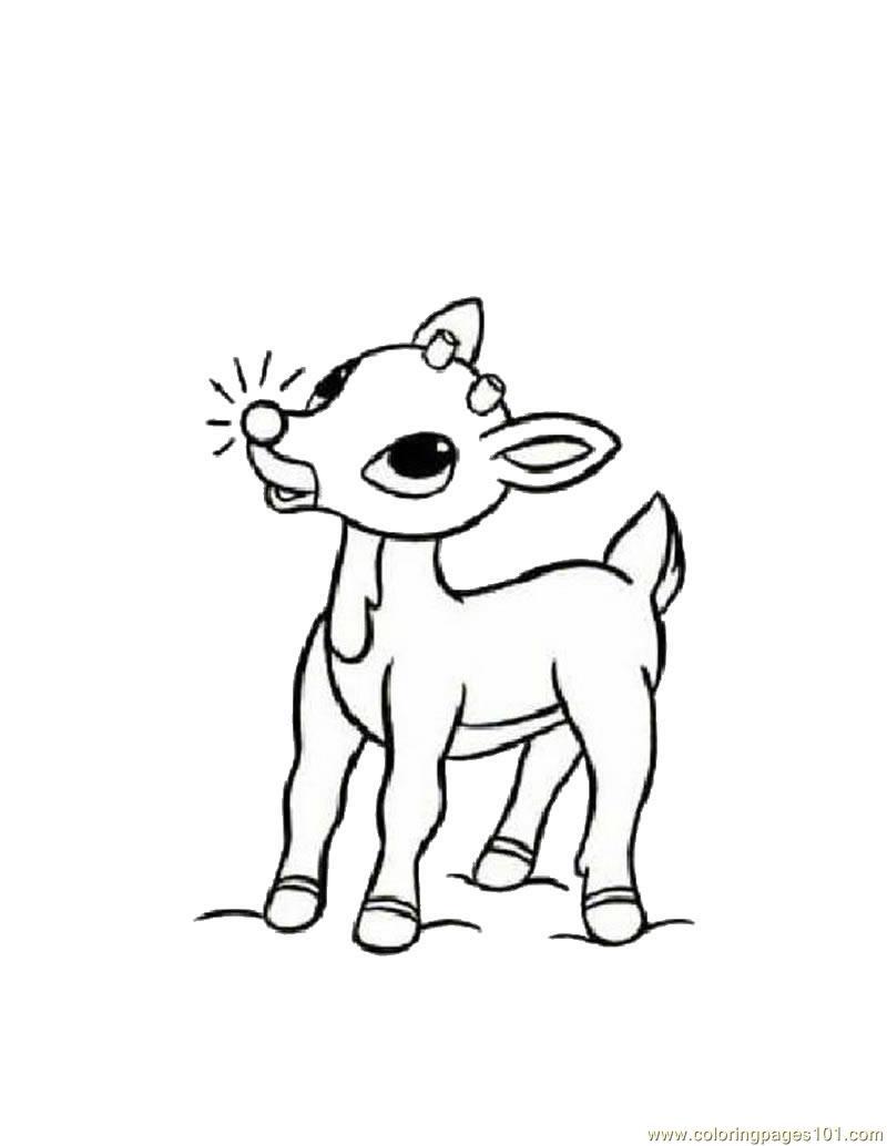 Coloring Pages Baby Deers (Animals > Deer) - free ...