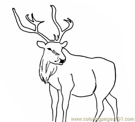 How To Draw Deer Masks