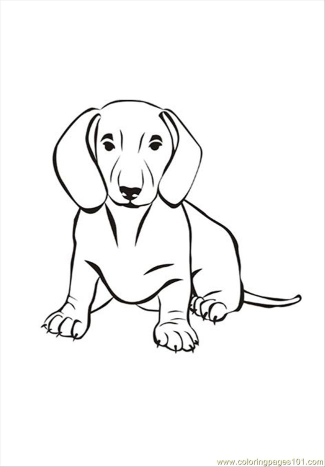 coloring pages dog18 animals dogs free printable