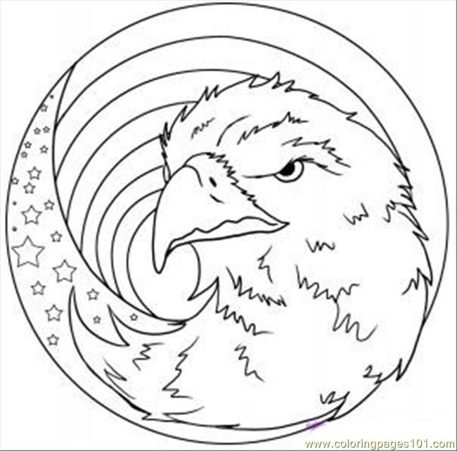 ... - Eagle Coloring Page Download American Eagle Coloring Page Template