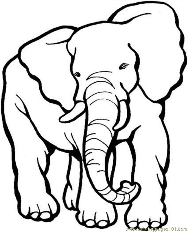 Free Coloring Pages Animals Elephants : Coloring pages elephant page animals