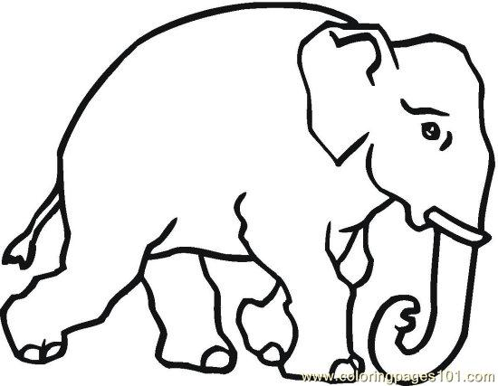 elephant head coloring page - free real elephant head coloring pages