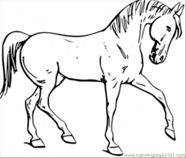 free printable coloring page horse pages for kids - Coloring Pages Horse
