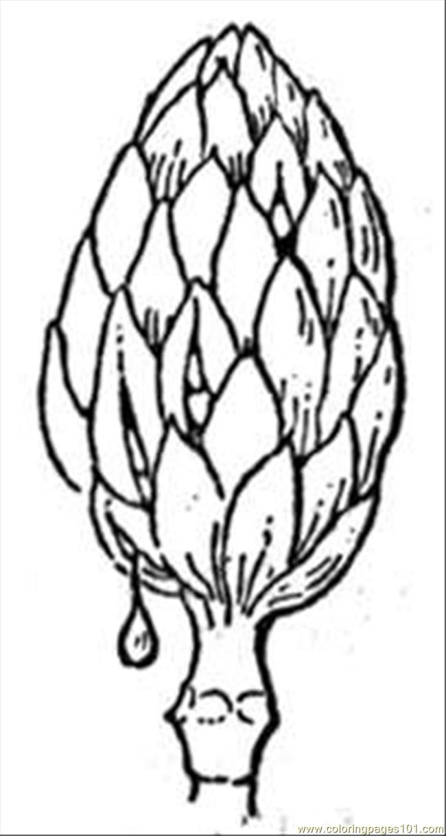 Coloring Pages Magnolia 2 Natural World gt Flowers free