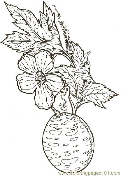 Cucumber Plant Colouring Pages