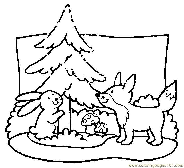 g fox co coloring pages - photo #25