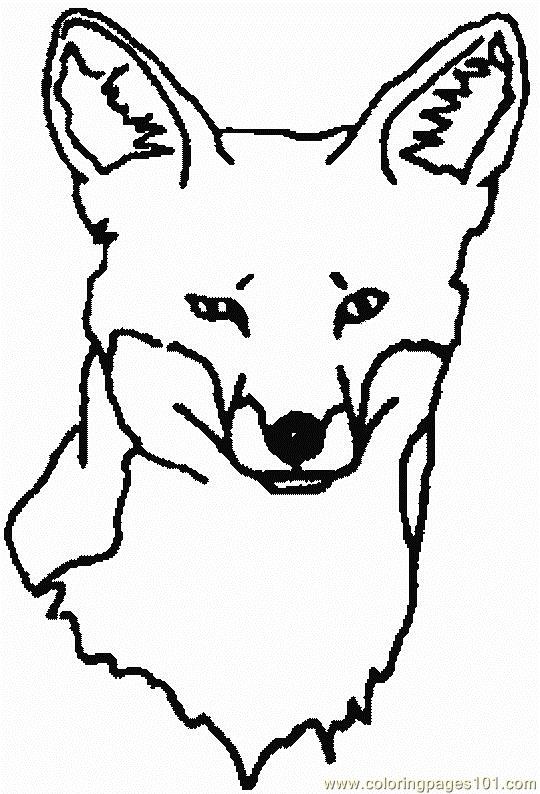 Coloring Pages Fox Face Animals Gt Fox
