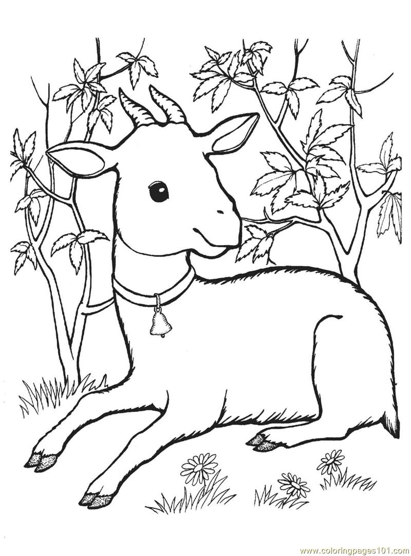 g for goat coloring pages - photo #47