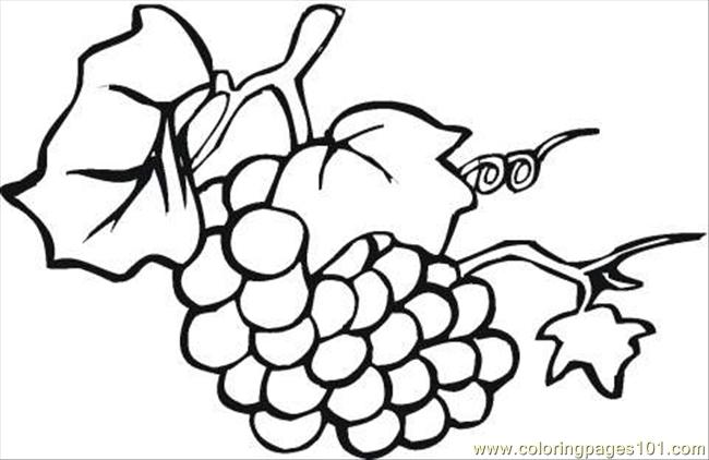 Free Coloring Pages Of Grape