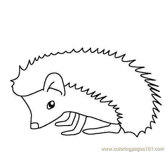Coloring Pages Hedgehog Animals Gt Hedgehogs Free Coloring Pages Hedgehog