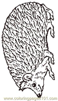 ... printable coloring page The Mitten Mural Hedgehog Coloring Page