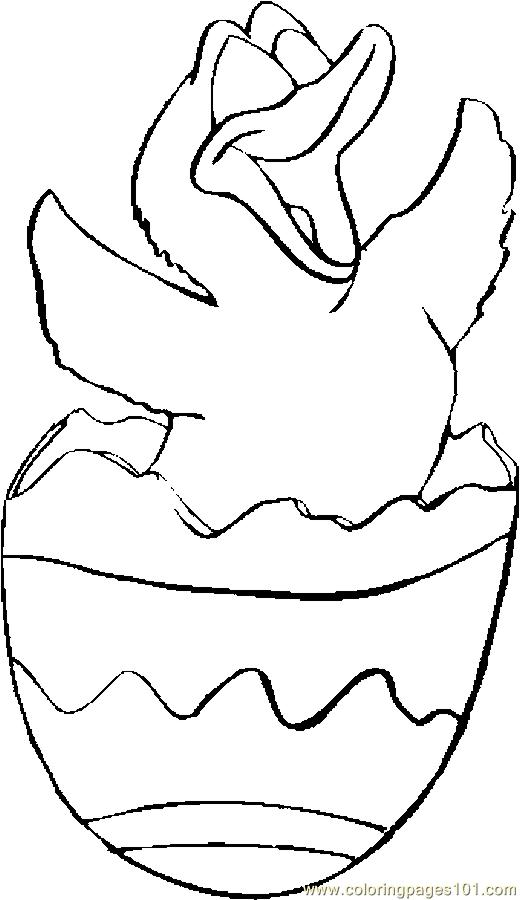 duck egg coloring pages - photo#24