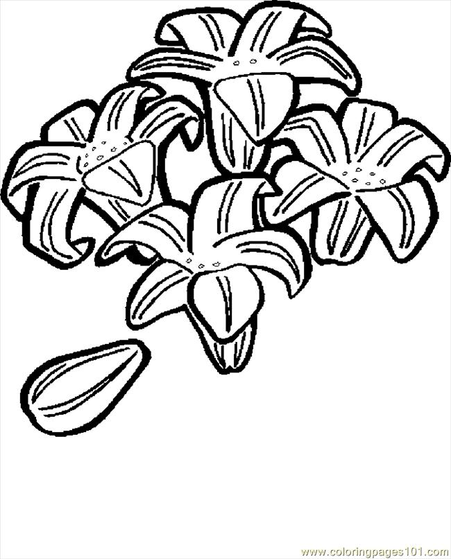 Coloring Page Of Easter Lily