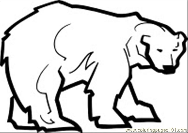 Coloring Pages Polar Bear Cartoons