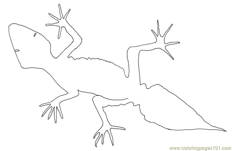 Free Desert Lizard Coloring Pages