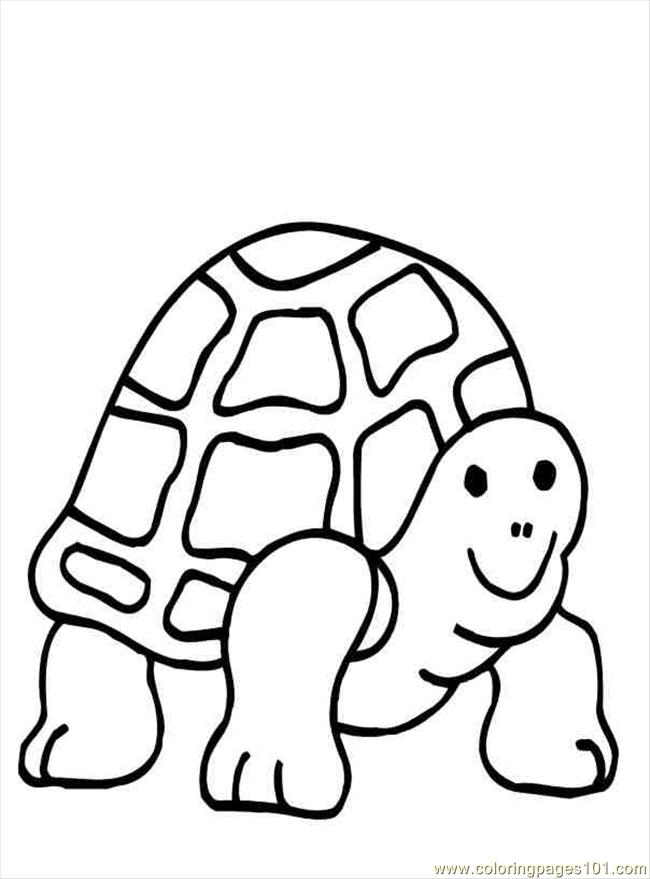 Coloring Pages Turtlecoloring01