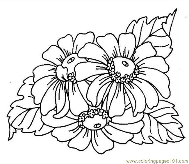 Coloring Pages Textile Pattern Free Printable Pic Hawaiidermatology