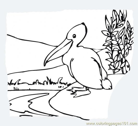 new orleans pelicans coloring pages - photo#33