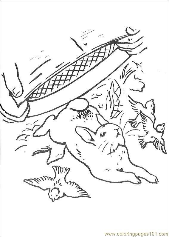 peter rabbit cartoon coloring pages - photo#21