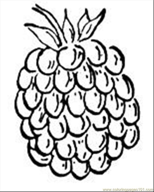 Coloring Pages Raspberry 1 Food