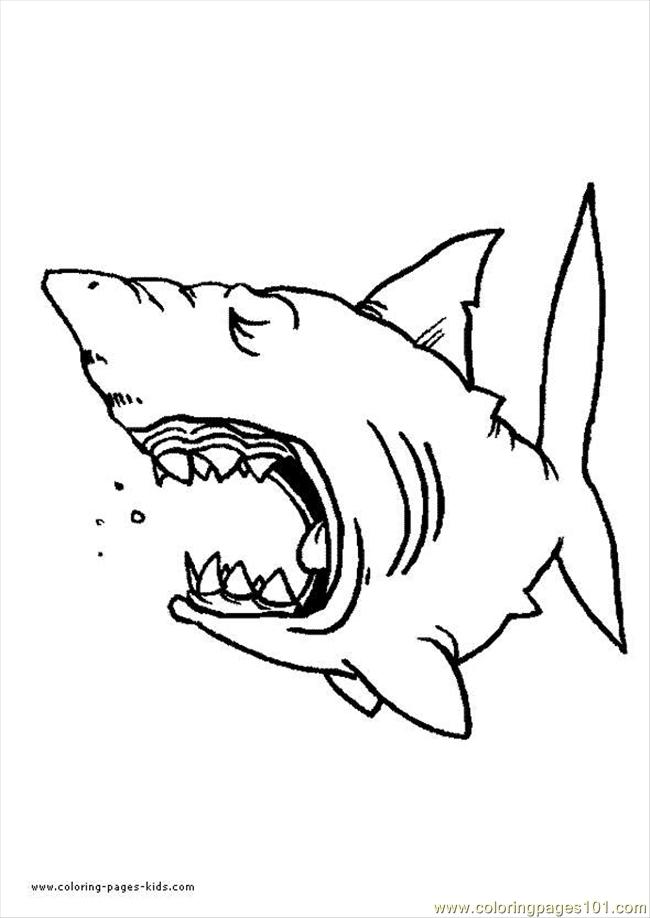Coloring Pages Shark 07 Fish gt