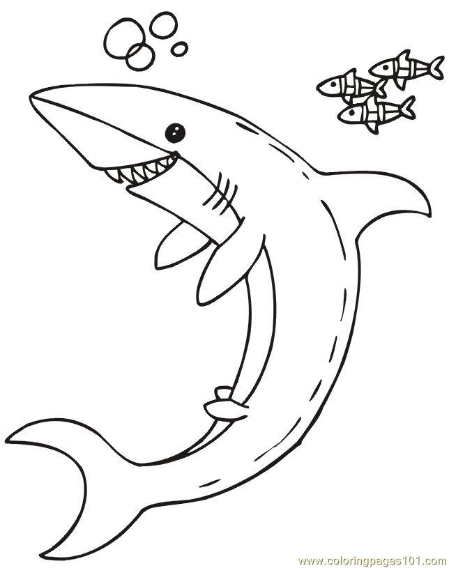 Coloring Pages Happy Shark Fish