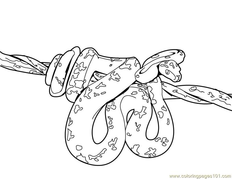 s is for snake coloring pages - photo #46