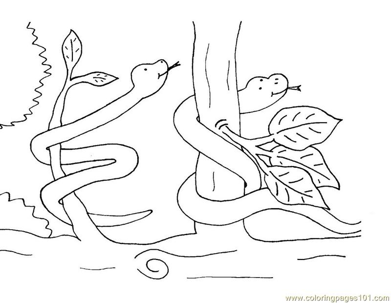 free reptile coloring pages - photo#36