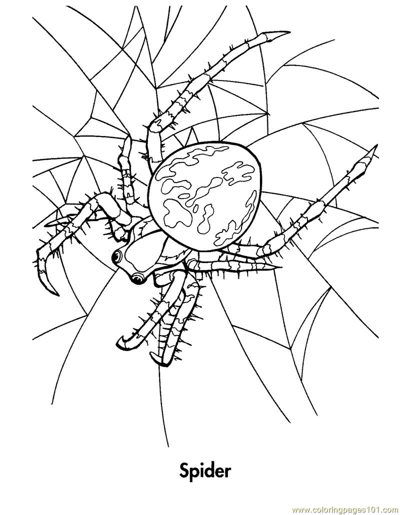 jailbird coloring pages - photo #45
