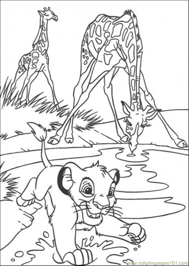 lion drinking water coloring pages   Drinking