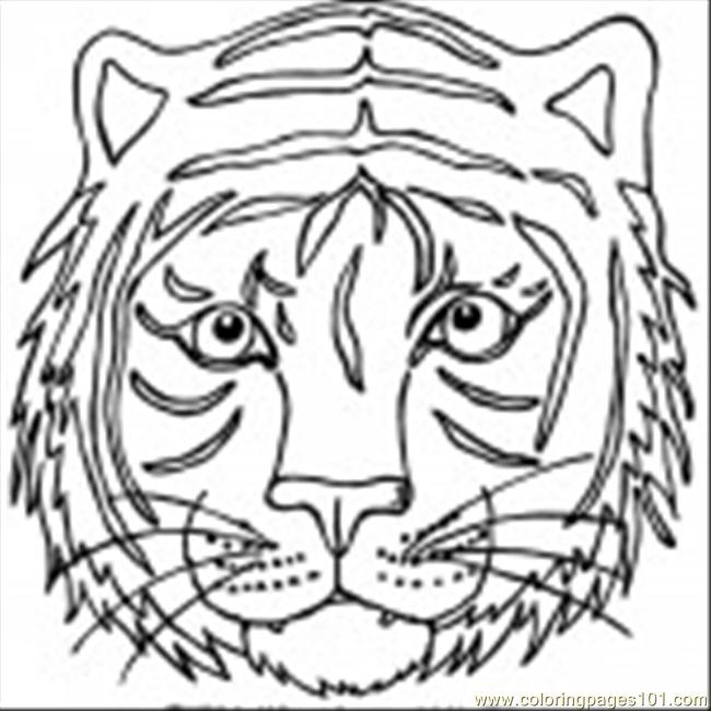 tiger head coloring pages tiger free printable coloring pages - Coloring Pages Tigers Lions