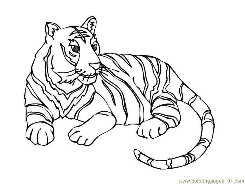 Раскраска тигр - 2