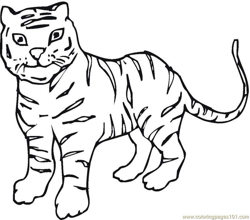 baby tigers coloring pages - photo#24