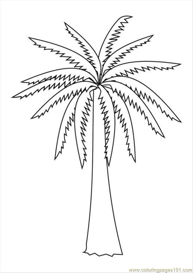 free palm leaves coloring pages - photo#10