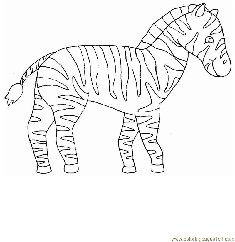 zebra coloring pages free - photo #35