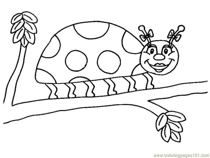 Coloring Pages Ladybug Insects Gt Ladybugs